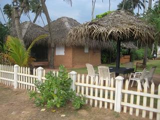 saffron hut web 1